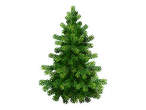 При закупке на 300т.р шикарная новогодняя елка 2.7м в подарок